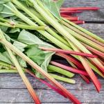 Inilah 6 Manfaat Rhubarb yang Perlu Diketahui