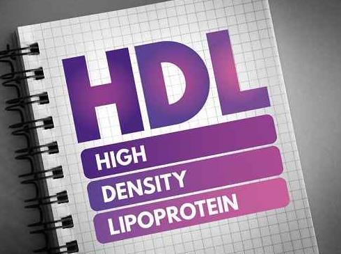Mengenal HDL Kolesterol